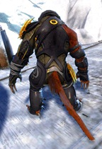 gw2-bandit-sniper-outfit-charr-male-3