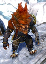 gw2-bandit-sniper-outfit-charr-male-4