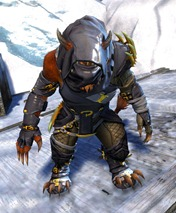 gw2-bandit-sniper-outfit-charr-male