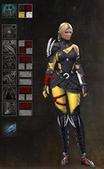 gw2-bandit-sniper-outfit-dye-pattern-female