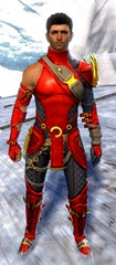 gw2-bandit-sniper-outfit-human-male-4
