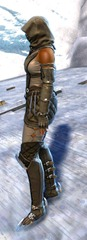 gw2-bandit-sniper-outfit-norn-female-2