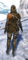gw2-bandit-sniper-outfit-norn-female-3