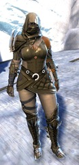 gw2-bandit-sniper-outfit-norn-female