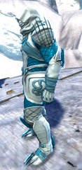 gw2-bandit-sniper-outfit-norn-male-2