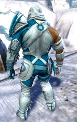 gw2-bandit-sniper-outfit-norn-male-3