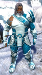 gw2-bandit-sniper-outfit-norn-male-4