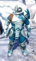 gw2-bandit-sniper-outfit-norn-male