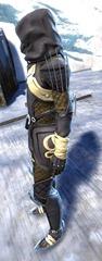 gw2-bandit-sniper-outfit-sylvari-male-2