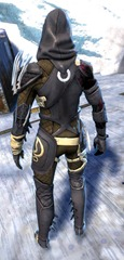 gw2-bandit-sniper-outfit-sylvari-male-3