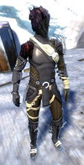 gw2-bandit-sniper-outfit-sylvari-male-4