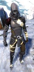 gw2-bandit-sniper-outfit-sylvari-male