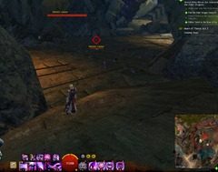 gw2-cleaning-house-act-3-achievements-2