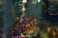 gw2-dragon's-stand-spider-nest-hero-point-2