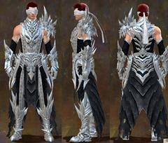 gw2-mistward-heavy-armor-male