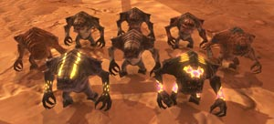Seven new Juvenile Rancor pets and the old PvP rancor reward in the front right