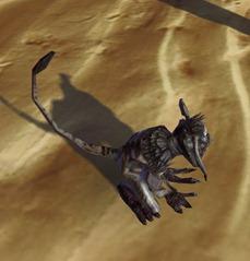 swtor-plaguetail-kowakian-monkey-lizard-pet-2