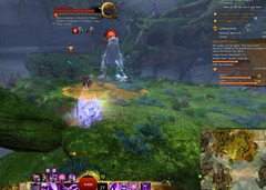 gw2-froglicker-verdant-brink-achievements-guide-2