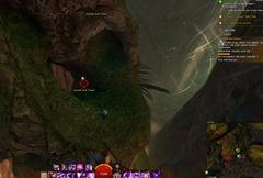 gw2-jungle-totem-hunter-achievement-guide-12