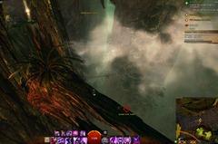 gw2-jungle-totem-hunter-achievement-guide-16