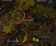 gw2-jungle-totem-hunter-achievement-guide-17