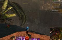 gw2-jungle-totem-hunter-achievement-guide-20