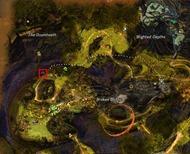 gw2-jungle-totem-hunter-achievement-guide-21