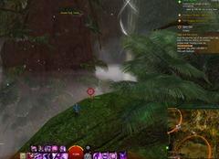 gw2-jungle-totem-hunter-achievement-guide-4