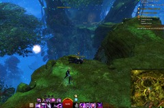 gw2-treetop-retriever-auric-basin-achievement-guide-17