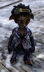 gw2-winter-solstice-outfit-asura-female-4
