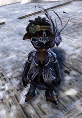 gw2-winter-solstice-outfit-asura-female