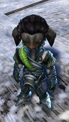 gw2-winter-solstice-outfit-asura-male-4
