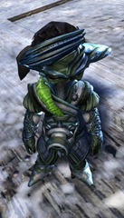 gw2-winter-solstice-outfit-asura-male