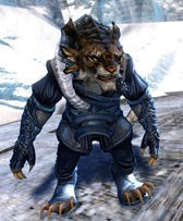 gw2-winter-solstice-outfit-charr-female-4