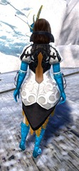 gw2-winter-solstice-outfit-norn-female-3