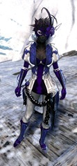 gw2-winter-solstice-outfit-sylvari-female