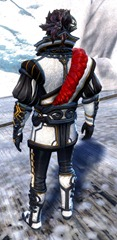 gw2-winter-solstice-outfit-sylvari-male-3