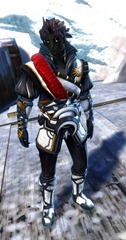 gw2-winter-solstice-outfit-sylvari-male-4