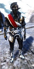 gw2-winter-solstice-outfit-sylvari-male