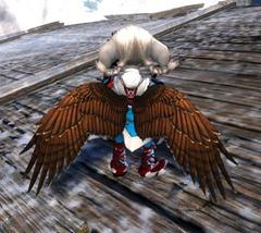 gw2-hawk-wings-backpack-asura