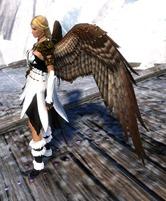 gw2-hawk-wings-backpack-skin-2