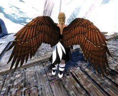 gw2-hawk-wings-backpack-skin