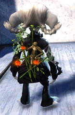 gw2-lucky-great-monkey-lanterns-4