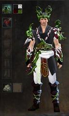 gw2-nature's-oath-outfit-dye-pattern-male