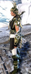 gw2-nature's-oath-outfit-human-male-2