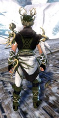 gw2-nature's-oath-outfit-human-male-3