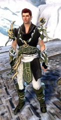 gw2-nature's-oath-outfit-human-male-4