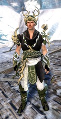 gw2-nature's-oath-outfit-human-male