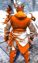 gw2-nature's-oath-outfit-norn-male-3