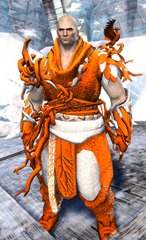 gw2-nature's-oath-outfit-norn-male-4
